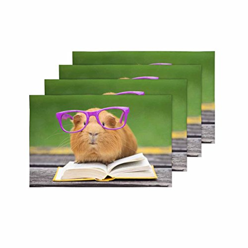 InterestPrint Funny Guinea Pig with Glasses Reading Book Kitchen Table Mats Placemats Set of 4, Cute Animal Place Mat for Dining Table Restaurant Home Decor 12''x18'' by InterestPrint