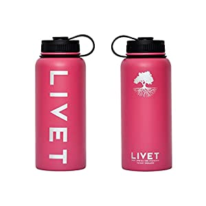 Stainless Steel Powder Coated BPA Free Water Bottle by Livet 32 oz - Pink