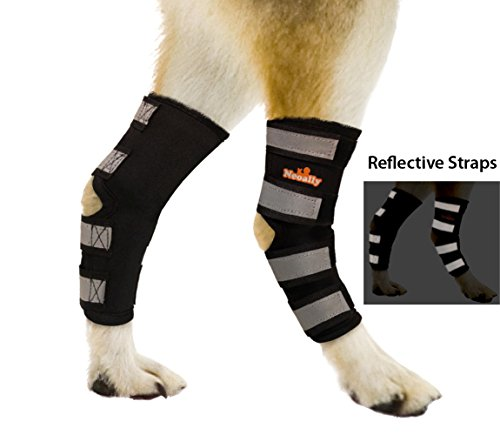 NeoAlly Dog Hind Leg Brace Canine Rear Hock Joint Wraps with Safety Reflective Straps - Compression Sleeves for Injury and Sprain Protection, Wound Healing and Loss of Stability from Arthritis (Pair)