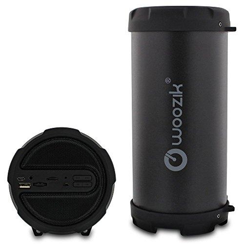 WOOZIK S213 Portable Loud Party Indoor, Outdoor Bluetooth Sp