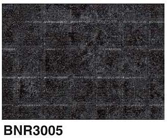 BNR3005