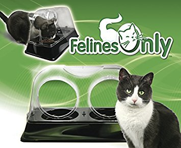 Felines Only - the Purrrfect Cat Dish - Veterinarian Designed Cat Feeding Bowl that Keeps Dogs Out of the Cat Food by Felines Only