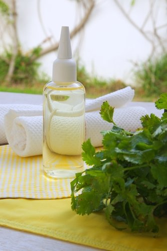 Debbie's Odor Eliminator Premium Fragrance Oil, 4 Oz. (Debbie Candle)