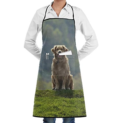 Eartha Tracy Whatever Unisex Cooking Kitchen Locking Golden Retriever Wallpaper Pocket Aprons Chef Apron Bib