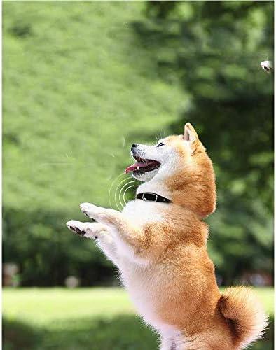 カラーロケータペット犬の追跡を失った平均シール動物は、抗赤デバイスマイクロポジショニングをGPS,赤
