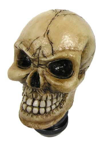 Gear Custom (Custom Accessories 23178 Skull Bone Gear Shift Knob)