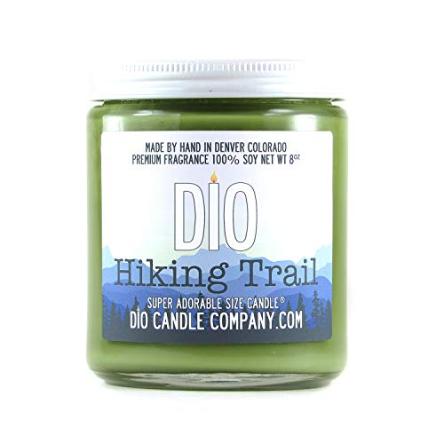 Adorable Size Candle Hiking Trail Dry Dirt - Cloudless Blue Sky - Wildflowers - Tree Bark - 8oz