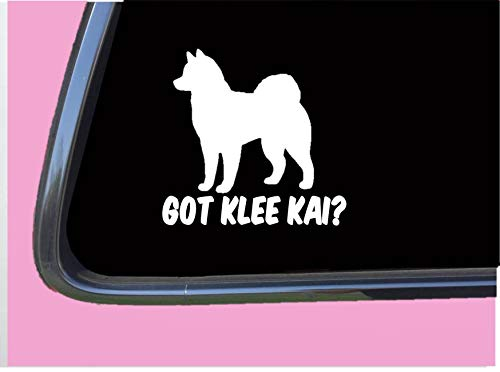 T-shirt Kennel - Got Klee Kai TP 567 vinyl 6