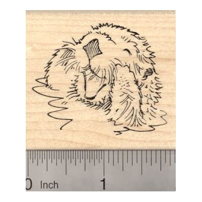 Playful Sea Otter Rubber Stamp, In Water, Talking: Arts, Crafts & Sewing