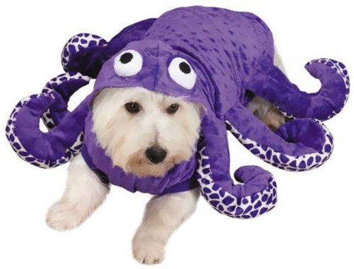 Zack & Zoey Octo-Hound Dog Costume, Large, Purple Octopus (Costumes For 2 Friends)
