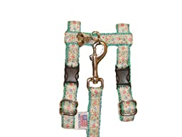Climbing Rose on Teal Adjustable Ferret Harness with Bell and Matching 4 Ft. Leash