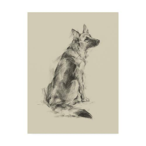 Trademark Fine Art Puppy Dog Eyes V by Ethan Harper, 14x19,