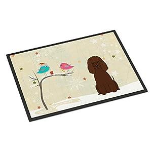Caroline's Treasures BB2535MAT Between Friends Irish Water Spaniel Indoor or Outdoor Mat 18x27, 18H X 27W, Multicolor 25