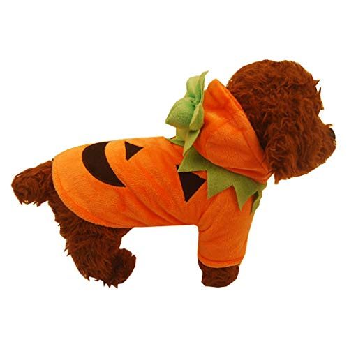 Jinjin Halloween Pet Cat Dog Shirt Pumpkin Painting Pet Coat Clothes Durable and Comfortable Warm Easy to Wear and Clean Bright Colors Become The Focus of The Holiday Party (ORS)
