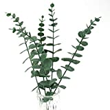 Tinsow 5 Pcs Real Touch Leaf Artificial Eucalyptus
