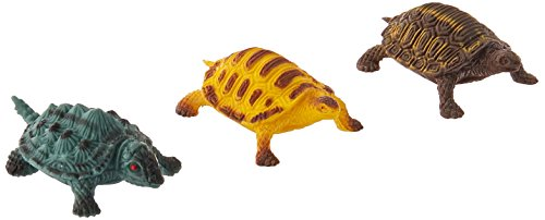 Turtles (approximately 1.5