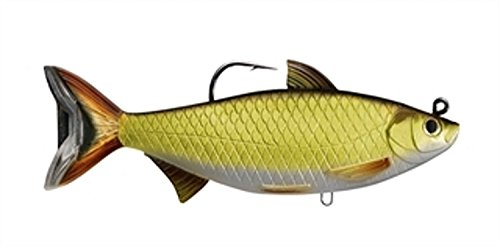 Wild Shiner - LiveTarget GSS140MS704 Golden Shiner Series Freshwater Swimbait, Gold/Black