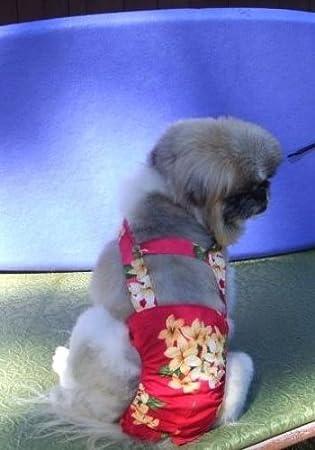 Joybies Pantalones cortos para perro galgo adulto 26-28 pulgadas Rojo con gráfico floral
