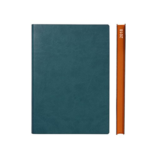 2018 Daily Planner Calendar by Daycraft Signature - A5 Size Green (D831G) - 8.25x5.88