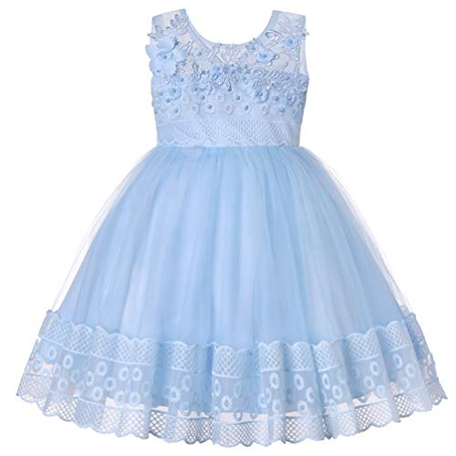 (JIANLANPTT Princess Girls Dresses Pearls Flowers Applique Mesh Girl Baby Party Evening Dress Style3 Light Blue 1-2Years)
