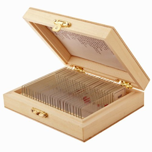 AmScope PS25 25pc Assorted Specimen Collection of Prepared Microscope Slides Glass Slide with Storage Case Portable Consumer Electronics Home - Collection Gla