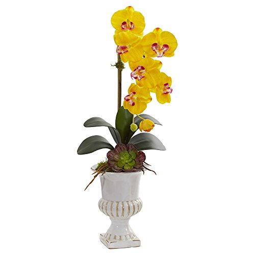 Nearly Natural 1604-YL Phalaenopsis Orchid and Succulent Artificial Urn Silk Arrangements, Yellow