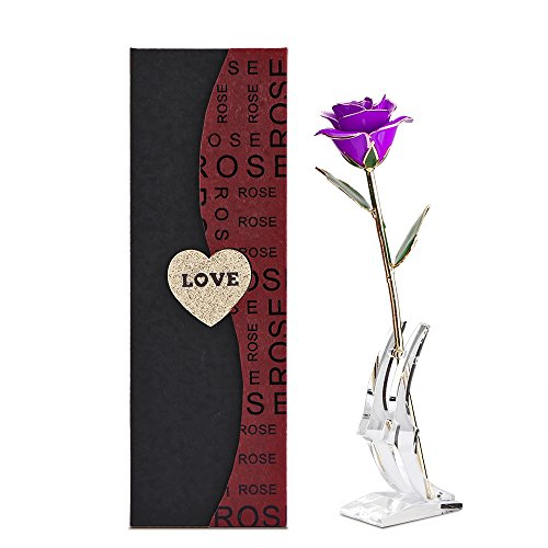 Gold Rose, DDSKY 24K Gold Trimmed Rose Long Stem Flower with Transparent Stand Creative Romantic Gift for Valentine's Day, Mother's Day, Anniversary (Purple) (Long Romantic Stem)