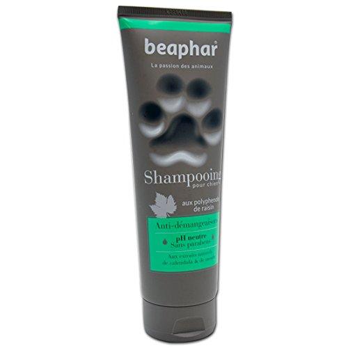 Beaphar - Champú Premium para perros anti picores, 250 ml