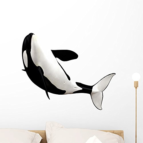 Wallmonkeys Orca Killer Whale Wall Decal Peel and Stick Animal Graphics (24 in H x 24 in W) WM28455 ()