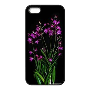 Pharrel Dendrobium Berry Oda Case For IPhone 5,5S Girls Protective, Iphone 5s Case Luxury For Girls With Black
