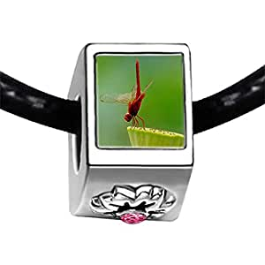 Chicforest Silver Plated Beautiful Lovely Dragonfly Photo Light Rose Crystal October Birthstone Flower Charm Beads Fits Pandora Charms