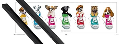 Poster + Hanger: Dogs Midi Poster  Sneakers By Keith Kimberl