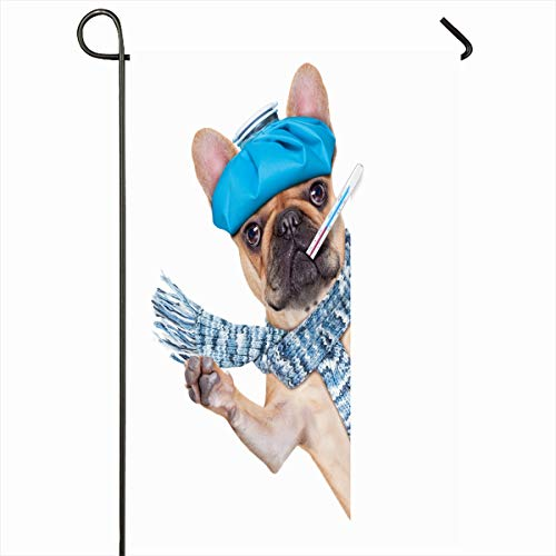 Ahawoso Seasonal Garden Flag 12x18 Inches Fever Recovery French Bulldog Dog Headache Hangover Veterinarian Ice Funny Ache Aid Care Design Home Decorative Outdoor Double Sided House Yard Sign