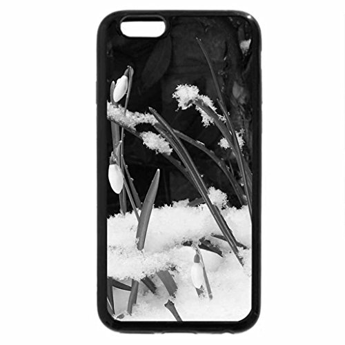 iPhone 6S Plus Case, iPhone 6 Plus Case (Black & White) - Snowdrops