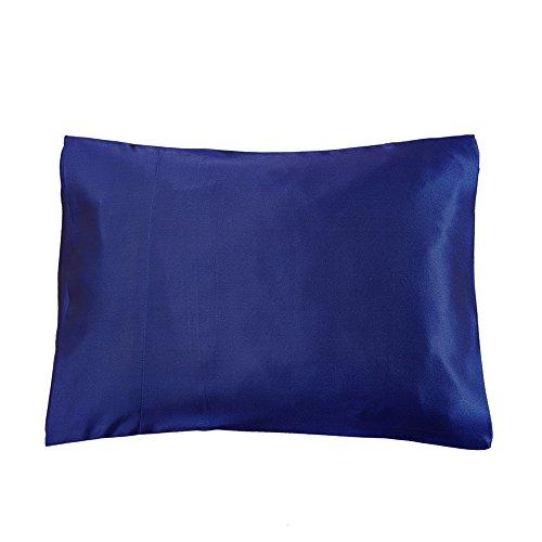 LilySilk 3101-12-38x56 Silk Pillowcase Baby Toddler Travel, 15 x 22, Blue ()