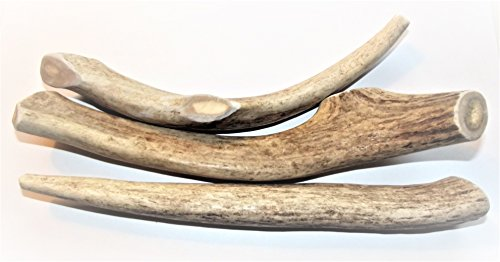 Large Antler Dog Chews, 2-pac is Now a 3-Pack 6-8 in. long,Premium Healthy antlers for Dogs Treats, by Deer Valley Dog (Reindeer Antlers For Sale)