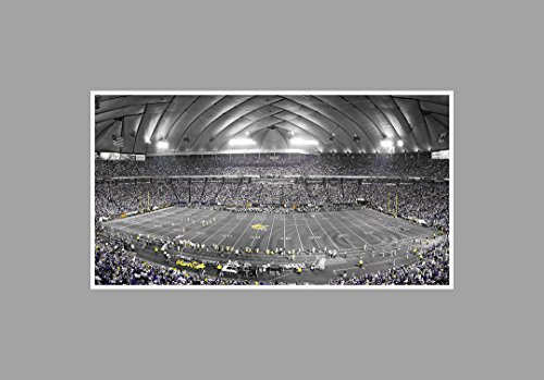 The Metrodome - Football Touch of Color - 36x20 Matte Poster Print Wall Art TOC