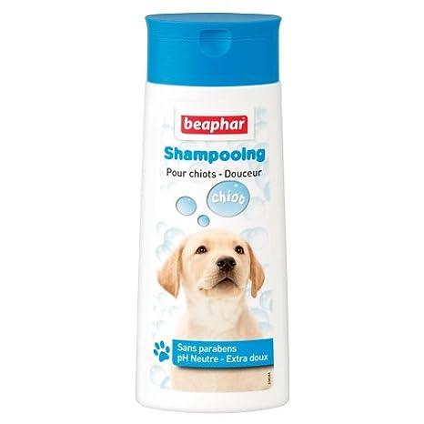 Beaphar - Shampooing Bulles anti-odeurs - chien - 250 ml 10342 shampooing chien shampooing anti-odeur chien soin du pelage chien