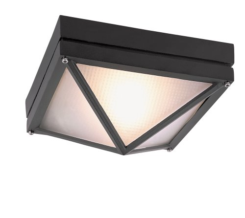 Trans Globe Lighting 43301 RT Outdoor Harland 4″ Flushmount Lantern, Rust