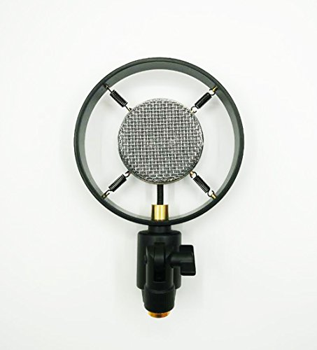 vintage cinema theater auditorium speech live vocal condenser microphone