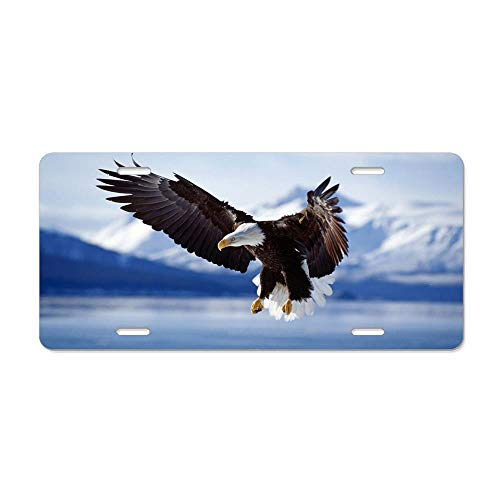 Kingsinoutdoor Bald Eagle Flying in The Sky Aluminum License Plate Cover for US Vehicles, Car Tag Sign Decoration for Women/Men, 12 x 6 ()