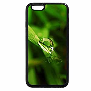 iPhone 6S / iPhone 6 Case (Black) Drop_on_Grass