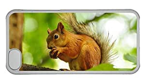 Hipster fun iPhone 5C covers squirrel eating PC Transparent for Apple iPhone 5C