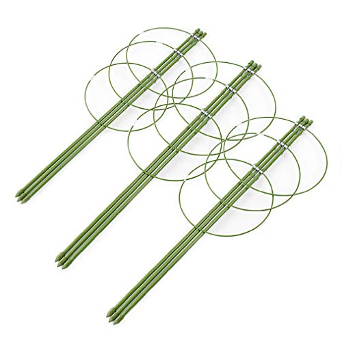 AHZZY Climbing Plants Support, Set of 3 Pack Ring Garden Trellis for Flowers Tomato Grow Cages Stand 24inches Height by AHZZY
