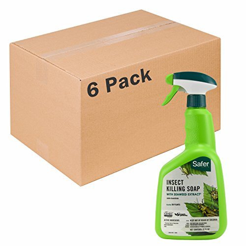 Safer Brand insect Killing Soap 32oz RTU - 6 pack 5110-6 - Rtu Insect Soap