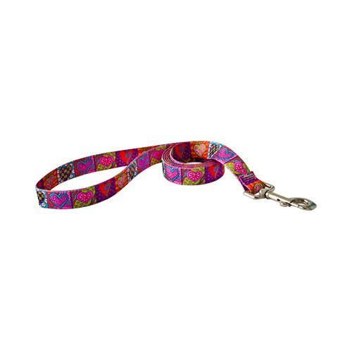 Heart Leash - Yellow Dog Design Lead, 1-Inch by 60-Inch, Crazy Hearts