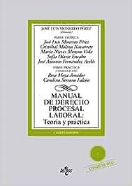 Manual de Derecho Procesal Laboral: Teoría y práctica