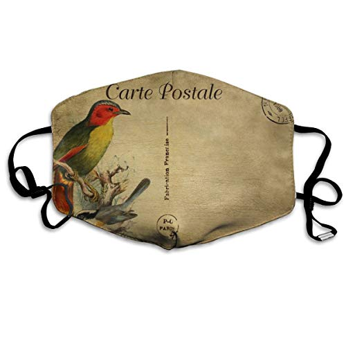 Custom Anti-Dust Mouth Mask Bird Vintage Postcard Reusable Outdoor Face Mask with Adjustable Earloops Breathable Mouth Cover for Teens Men -