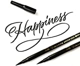Art-n-Fly Dual Tip Black Brush Pens for Lettering