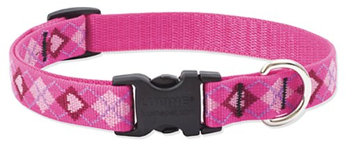 "LupinePet Originals 3/4"" Puppy Love 13-22"" Adjustable Collar for Medium and Larger Dogs"